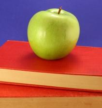 Curso de Educação Inclusiva com certificado