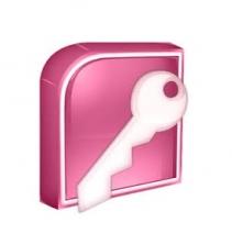 Access 2013 na Prática Avançado