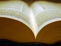 Nomes, palavras e diferentes linguagens