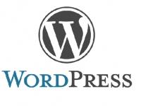 Wordpress para leigos