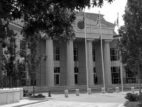 Direito Administrativo: Licitações