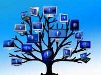Introdução de Redes Sociais para Empresas