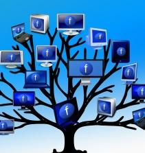 Curso de Introdução de Redes Sociais para Empresas com certificado