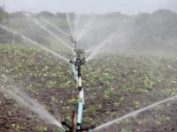 Uso dos agrotóxicos, um risco a saúde e ao meio ambiente