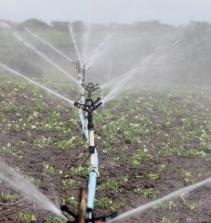 Curso de Uso dos agrotóxicos, um risco a saúde e ao meio ambiente com certificado