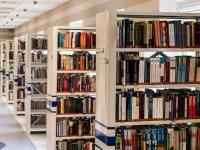Auxiliar de biblioteca