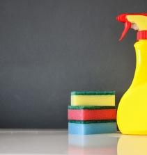 Limpeza da Casa - Fácil