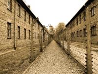 Nazismo, Fascismo e Totalitarismo