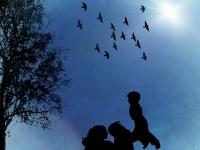 Direito Civil: Direito da Família
