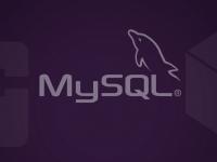 Mysql com Banco de Dados para a Criação de Sites e Sistemas