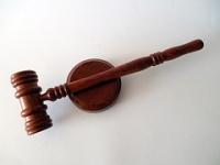 Direito Constitucional: Poder Executivo