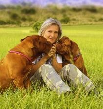 Cuidador de Cães -  Intermediário