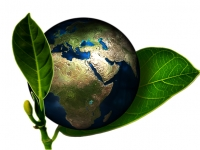 Responsabilidade Ambiental: Administrativa e Civil.