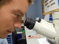 Bioquímica Básica - Estrutura e Função