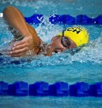 Curso de Efeitos da suplementação nos nadadores com certificado
