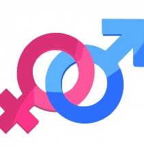 Curso de Gênero e sexualidade na educação de jovens e adultos um estudo de caso com certificado