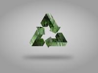 Sustentabilidade nas Empresas