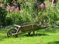 Técnicas de jardinagem