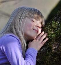 Curso de Qual o seu lugar? A educação ambiental problematizada na formação inicial dos arte-educadores com certificado
