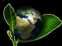 Los estudios sobre el ambiente y la ciencia ambiental