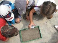Educação Ambiental Infantil: dinâmicas para aulas práticas