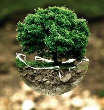 Fundamentos gerais do direito ambiental