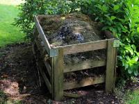 DIY - Como transformar o seu lixo em adubo para plantas em casa