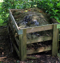 Curso de DIY - Como transformar o seu lixo em adubo para plantas em casa com certificado