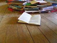 Gramatização e história: um estudo do português brasileiro