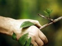 Ações e estratégias para o desenvolvimento sustentável