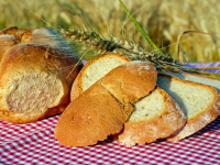 Pães artesanais: conhecendo ingredientes, processos e técnicas
