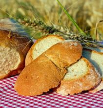 Curso de Pães artesanais: conhecendo ingredientes, processos e técnicas com certificado