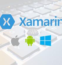 Aplicativos com Web Services e API em Xamarin