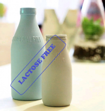 Gastronomia sem lactose: como criar um cardápio para intolerantes