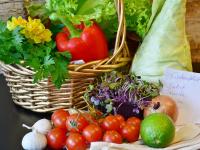 Cozinha vegetariana - nutrição e receitas