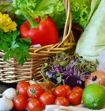 Curso de Cozinha vegetariana - nutrição e receitas com certificado