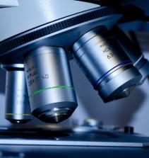 Curso de Introdução ao estudo da biotecnologia com certificado
