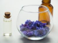Introdução à Cosmetologia