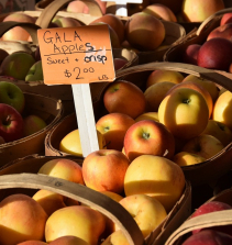 Triagem e avaliação do estado nutricional
