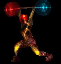 Musculação do Iniciante ao Avançado