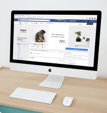 Orientações Básicas de Marketing Social