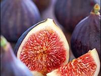 Nutrição: adequação alimentar e suplementação