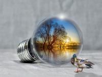 Lecciones - Gestión Ambiental