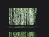 Programación de Algoritmos
