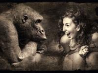 Curso de Humor - Como montar e contar piadas?