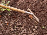 Técnicas de Cultivo Maracujá