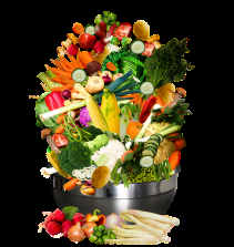 Vida vegetariana