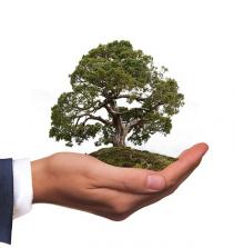 Concurso público: Direito Ambiental