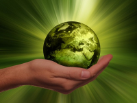 Noções de Sustentabilidade