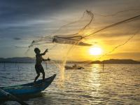Pesca Iniciante